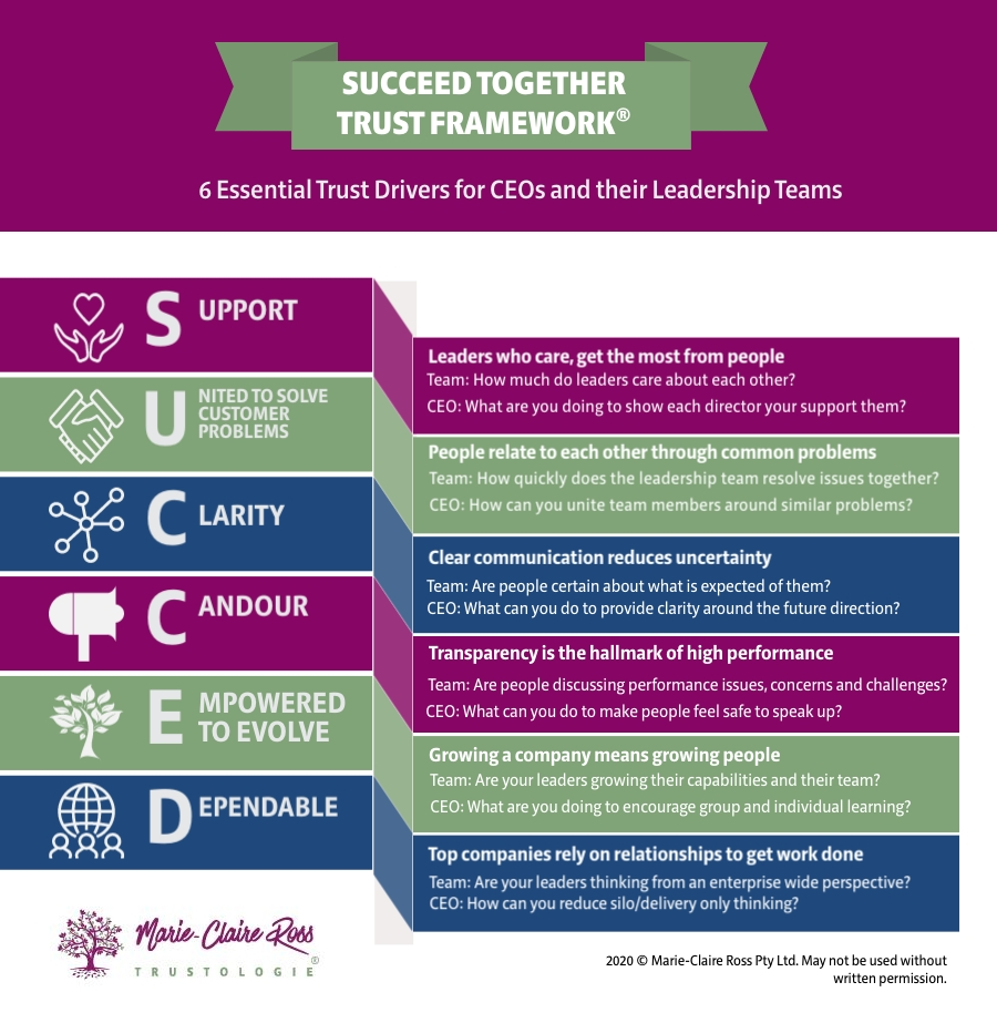 Building Trust in Leadership Teams Framework