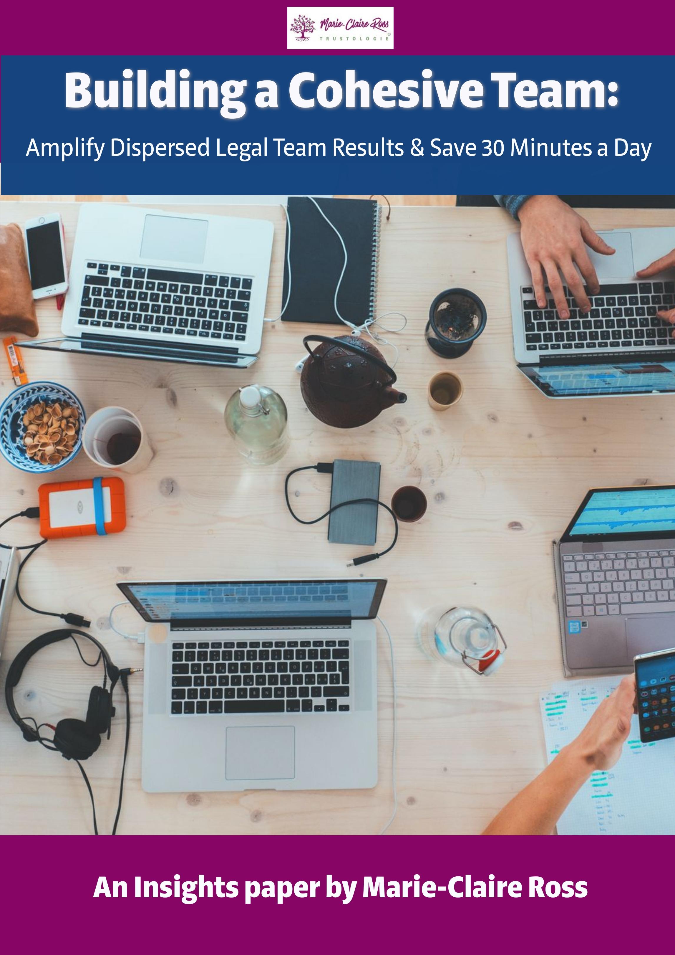 Building a cohesive legal team